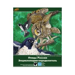 Birds of Russia. Encyclopedia-determinant
