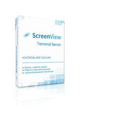 ScreenView Terminal Server