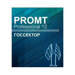 PROMT Professional Public Sector 12