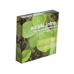 Aurabi Intro for MS Terminal
