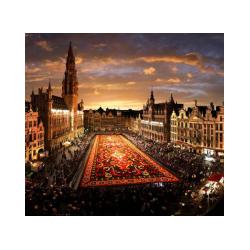 "Brussels (audioguide series ""Belgium"")"