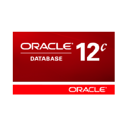 Oracle Database 2 Standard Edition