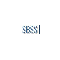 SBSS - synchronization of distributed heterogeneous databases (ANSI version)