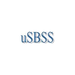 USBSS - synchronization of distributed heterogeneous databases (UNICODE-version)